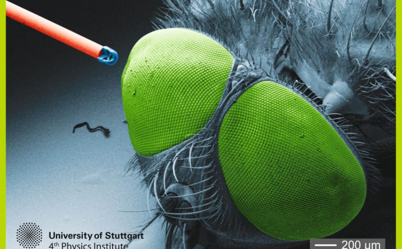 Optische Microlinsen aus dem 3D – Drucker