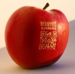 Gelaserte Äpfel sind ein schönes Werbegeschenk.