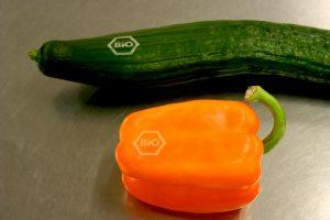 Natural Branding - einige Gemüsesorten lassen sich gut mit Laser beschriften.