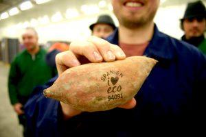 Auch Süßkartoffeln eignen sich für das Natural Branding
