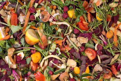 Gemüse und Obst länger haltbar: Edipeel