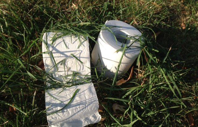 Toilettenpapier aus Gras